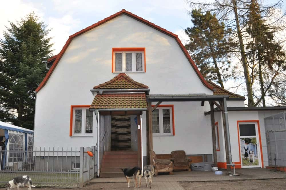 Altenheim für Tiere
