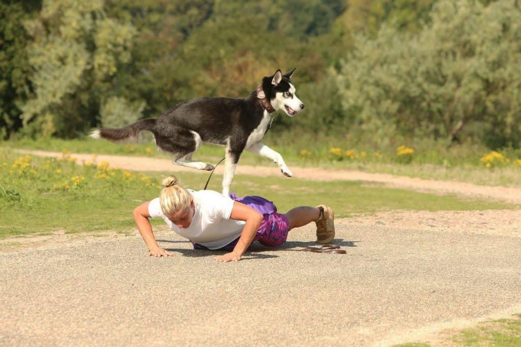 Buddy and Bello Expertin Nicole Voß - Hundetraining