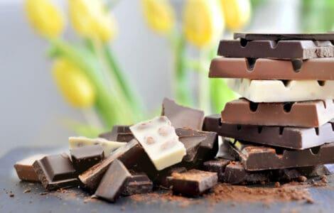 Hund Schokolade giftig