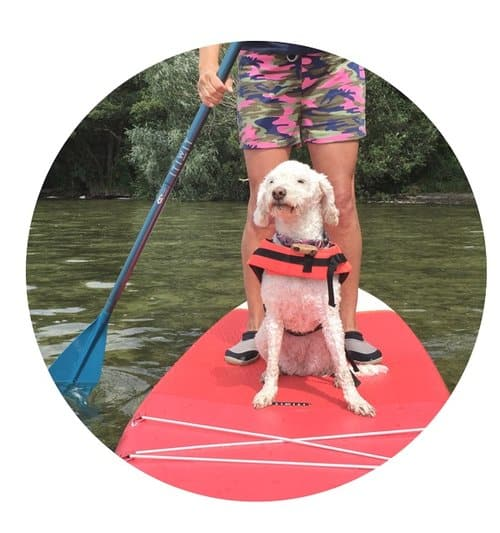 Schwimmweste SUP mit Hund