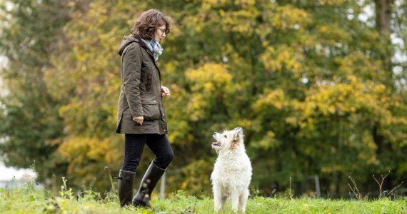 Buddy and Bello Experten - Tierärztin Charlotte Kolodzey Ingo Nolte