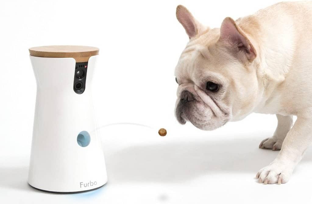 Hunde Gadgets | FURBO