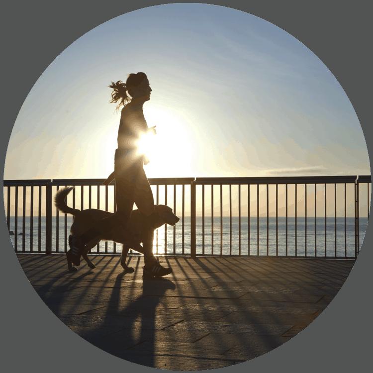Sport mit Hund im Sommer- sommertipps