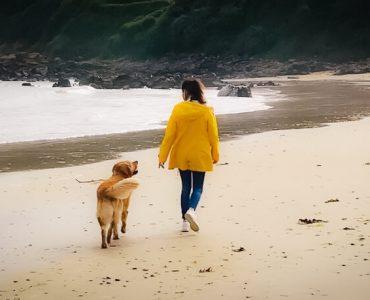 Claudia Peter-Plum Hunde Expertin Kind und Hund