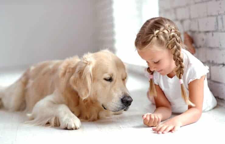 BuddyandBello-Hund-und-Kind