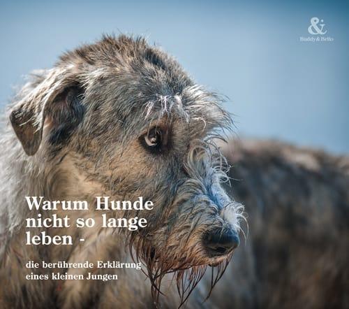 Buddy and Bello - Warum Hunde nicht so lange leben